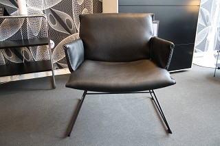 Lounge Chair DS - 515